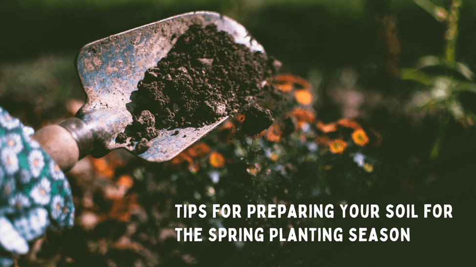 Tips for Planting Your Soil for the Spring Planting Season